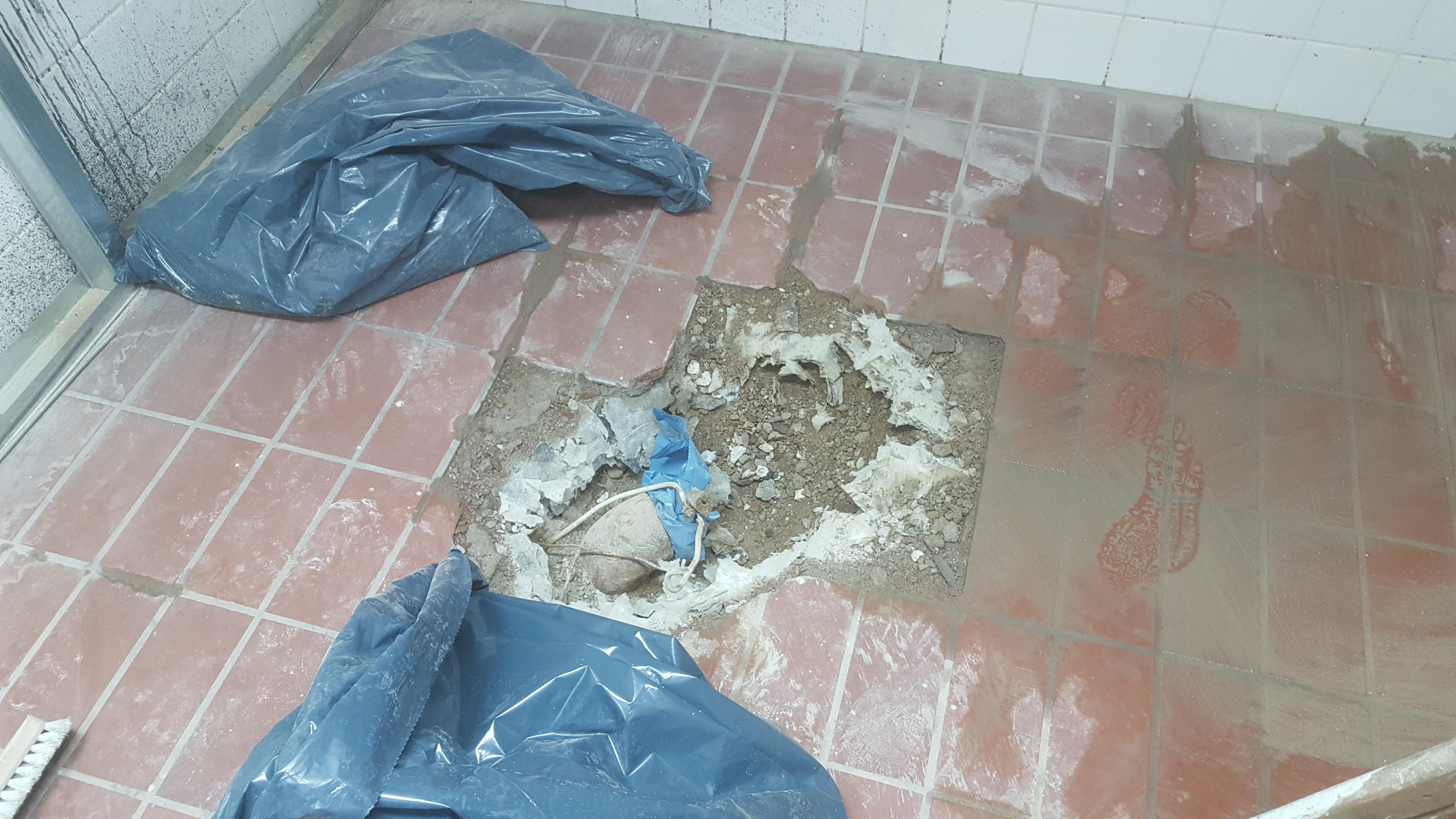 Erneuerung Bodenablauf in Dusche