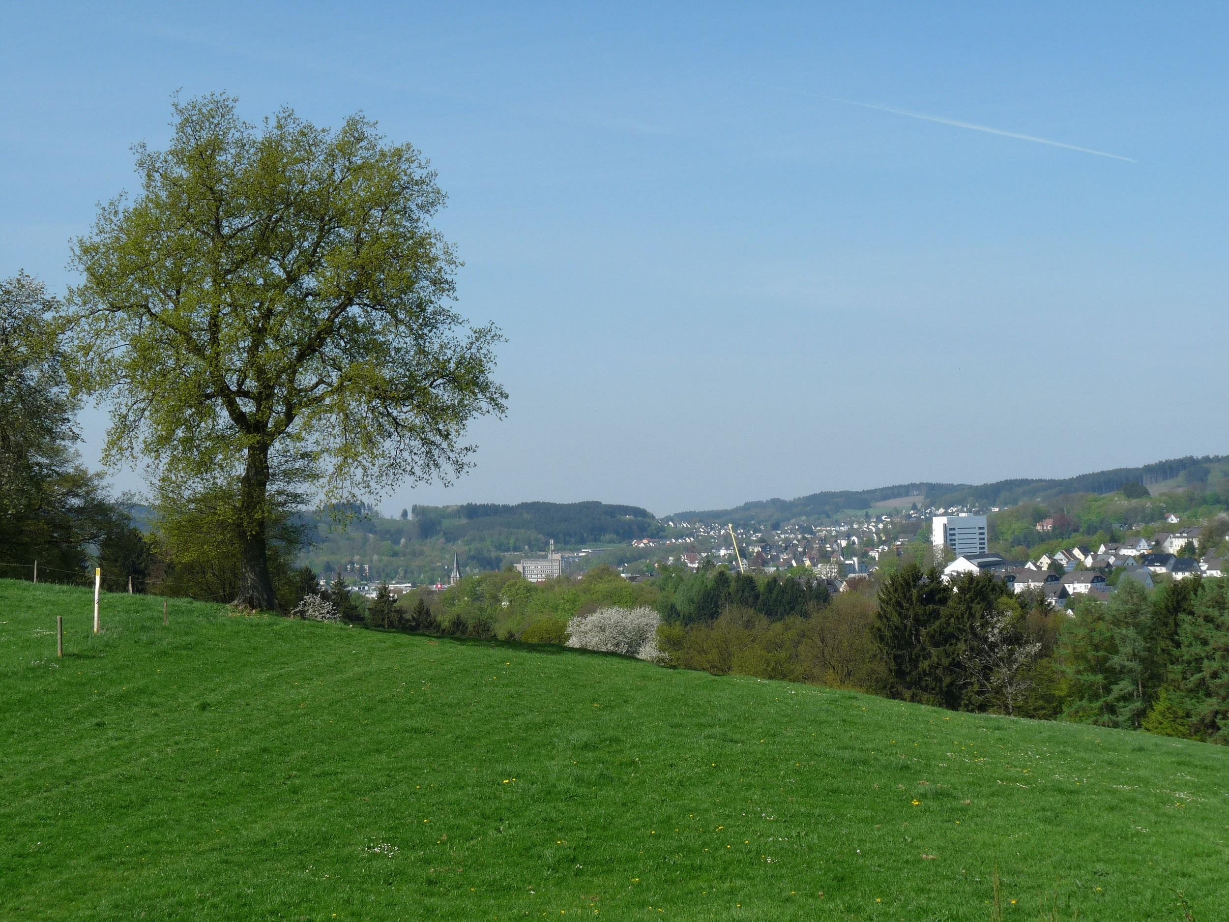 Blick ab Bernberg auf die Innenstadt